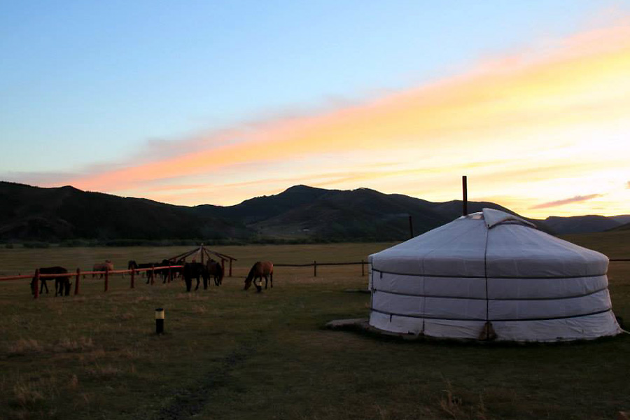 ger camp on transmongolian horse trek