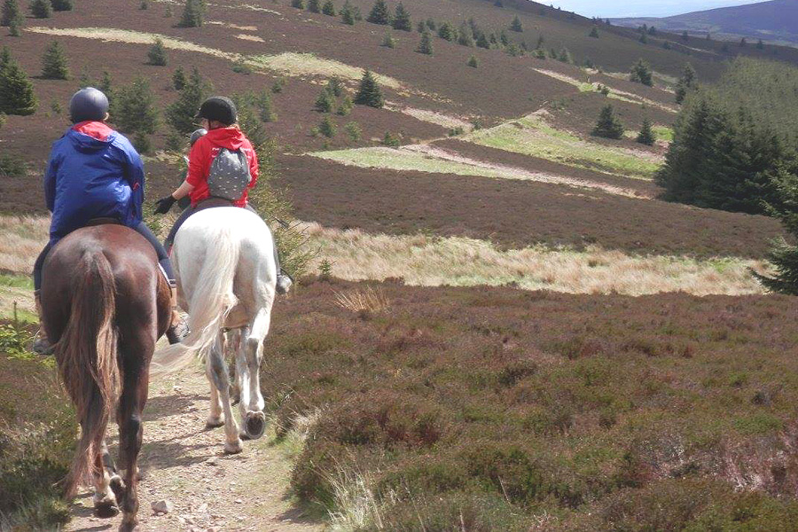 Trail riding in Scotland