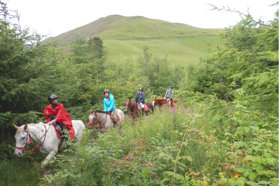 Trails on horseback in Scotland