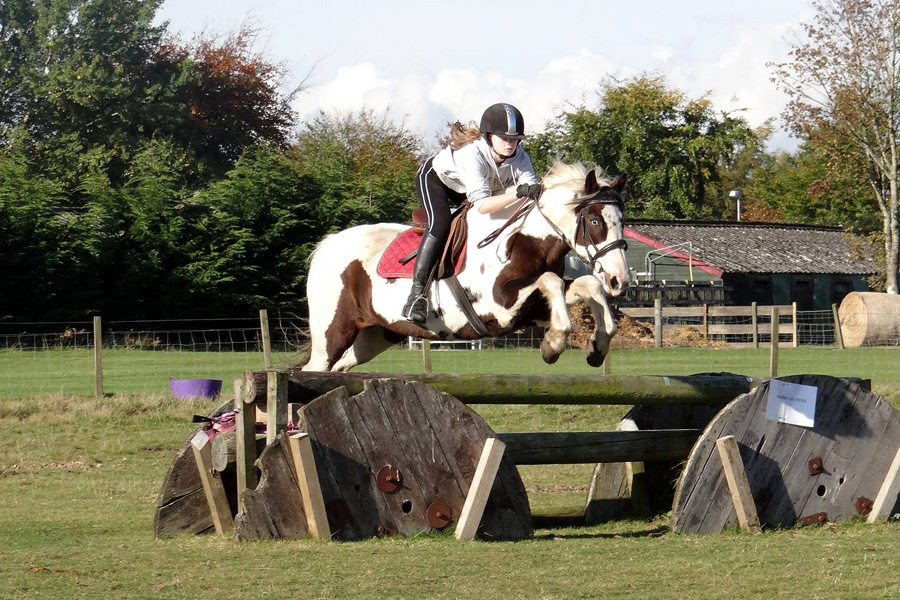 Horse riding tuition in Scotland