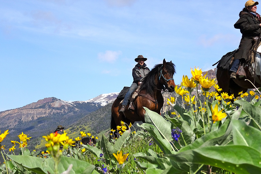 Horse riding holiday Chilcotin