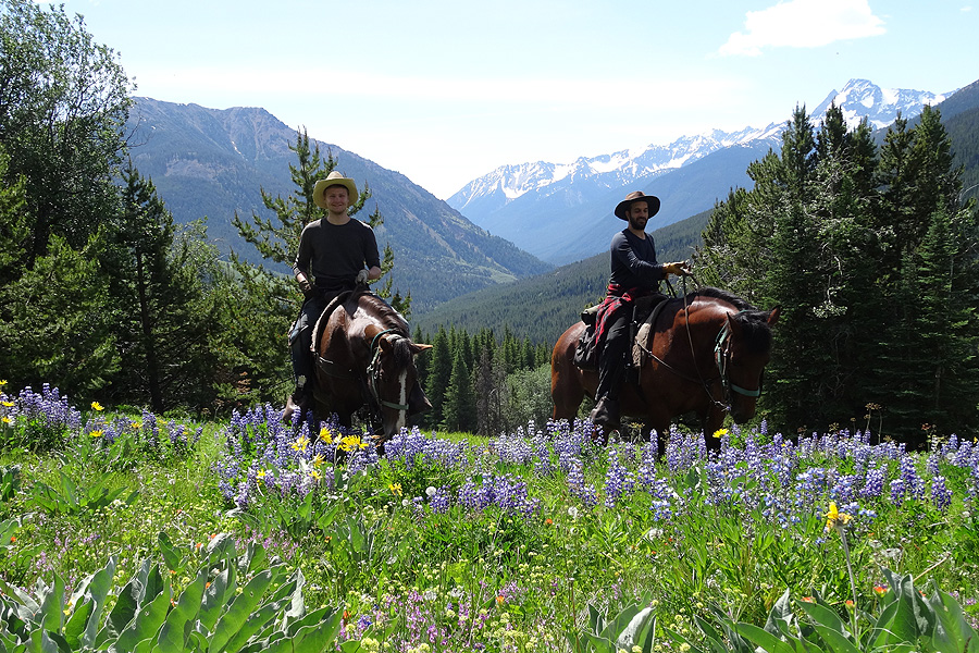 Horse riding in wild Canada