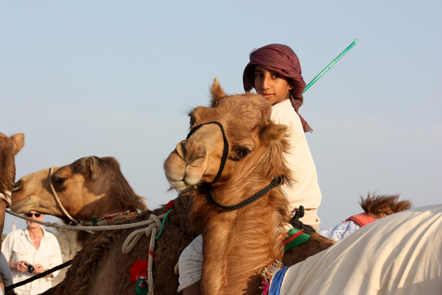 Horse riding holiday in Oman