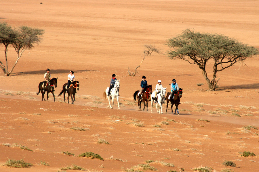 Horse riding in the Omani desert