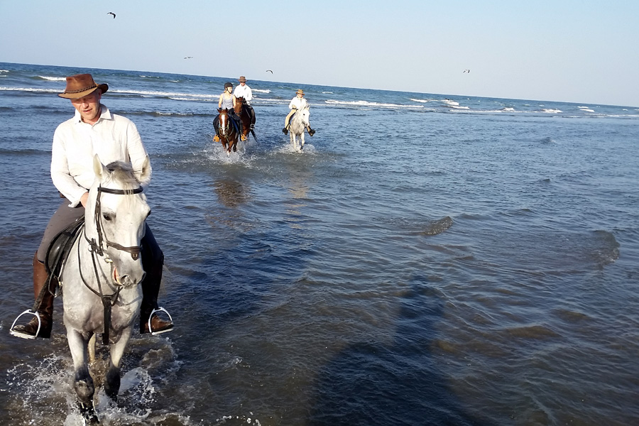 Horse riding in the Arabian Sea