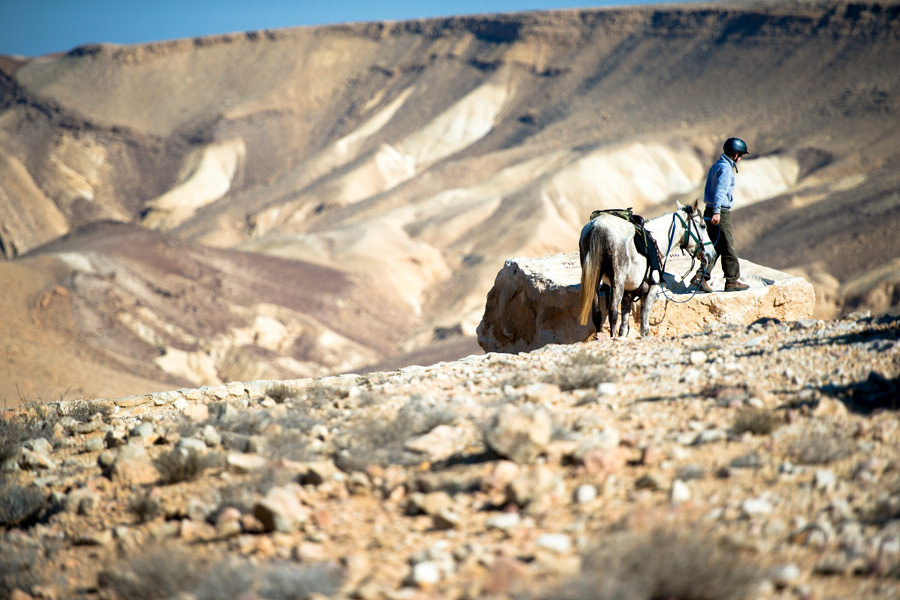 Horse riding holiday Ramon Crater