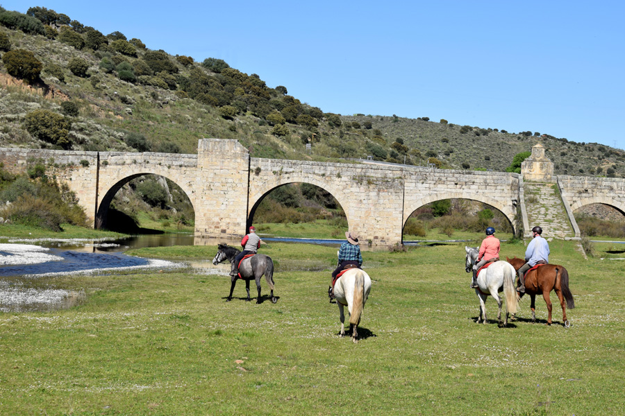 Fast horseback vacation in Spain