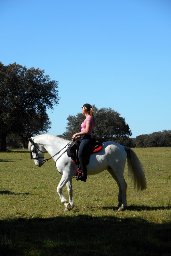 Horse riding holiday with PRE Spanish horses