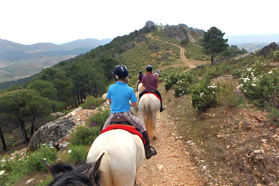 Horseback vacation in Spanish countryside