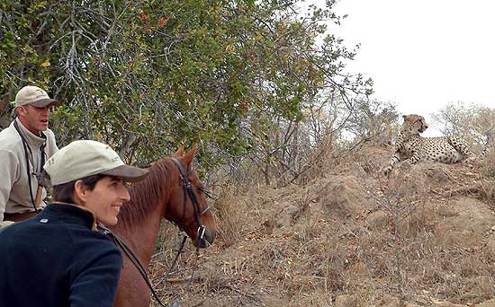Horseback vacation South Africa