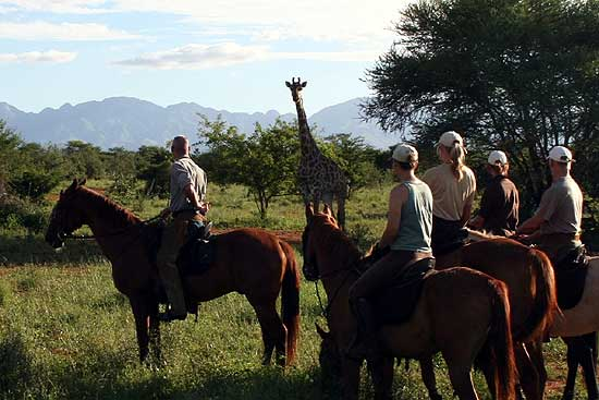 Big 5 horse riding safari