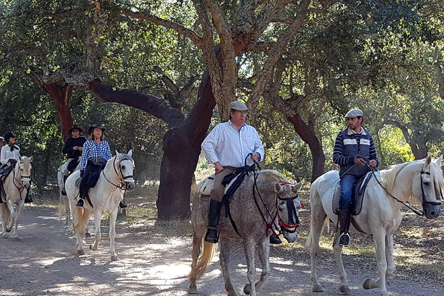 Horse riding in National Park in Spain