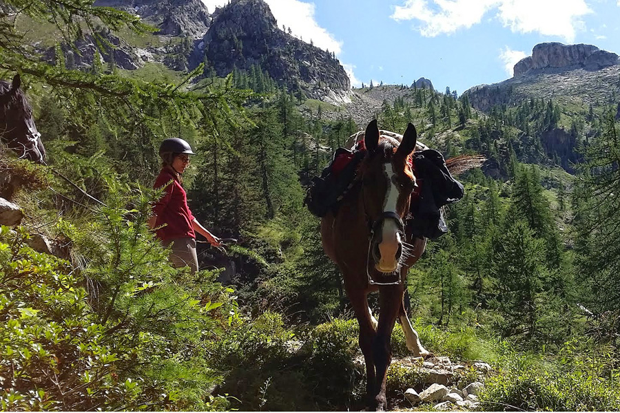 Adventurous horse riding holiday in France