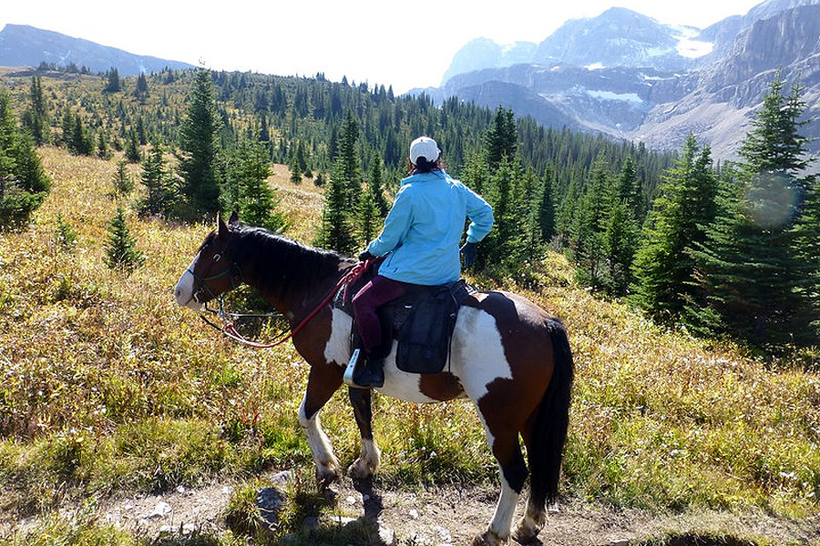 Horse riding pack trip in Canada
