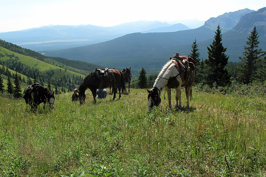 Mountain horse riding holiday