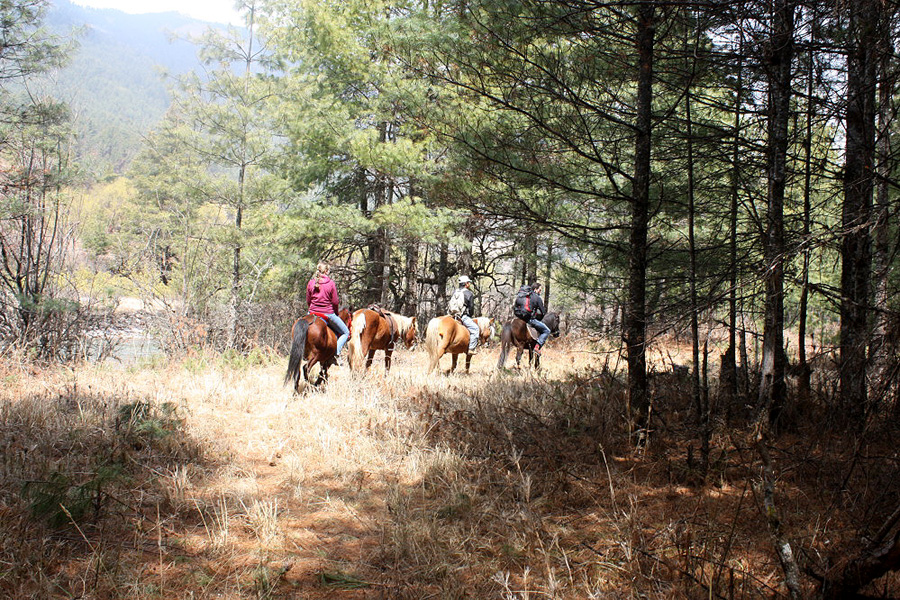 Horseback vacation Bhutan
