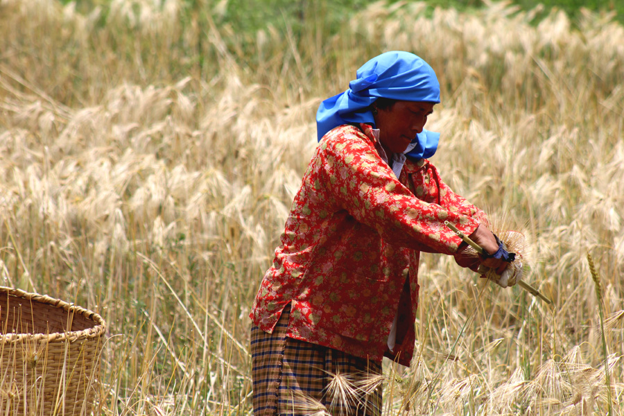 Cultural vacation in Bhutan