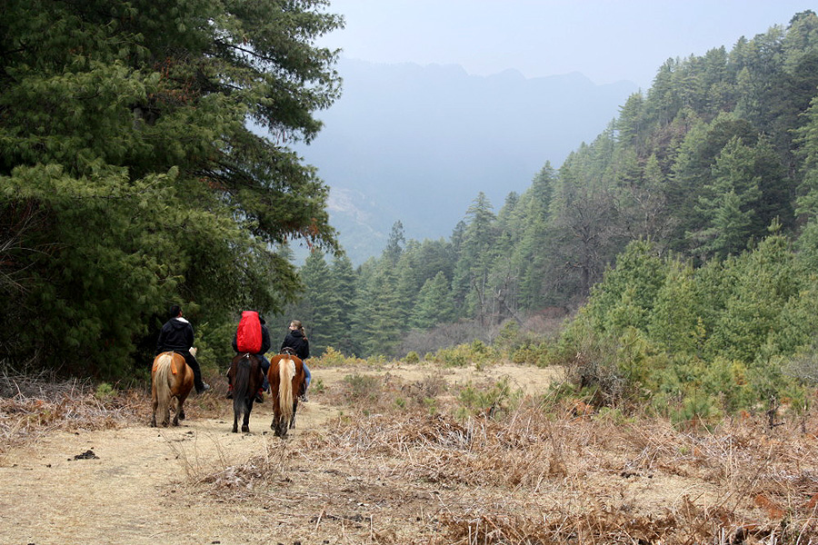 Trial riding in the Himalaya