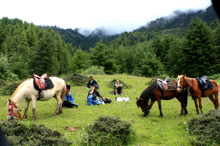 Horse riding holiday in Bhutan