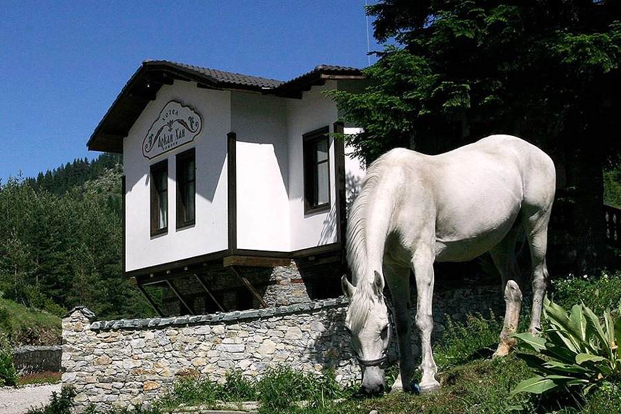 Riding and spa holiday Bulgaria