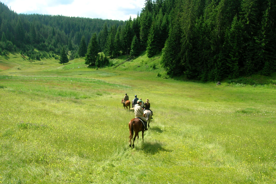 Horse riding holiday in Eastern Europe