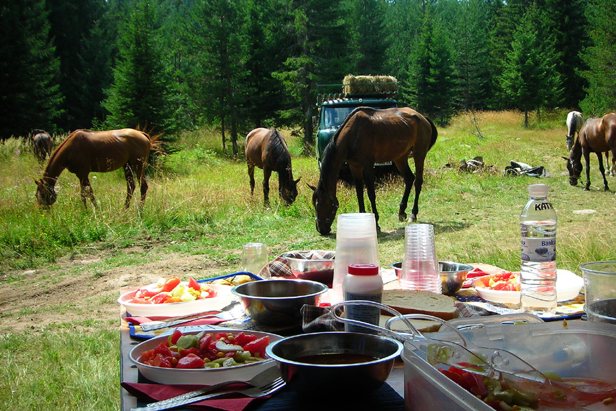 Horse riding holiday in Bulgarian wilderness