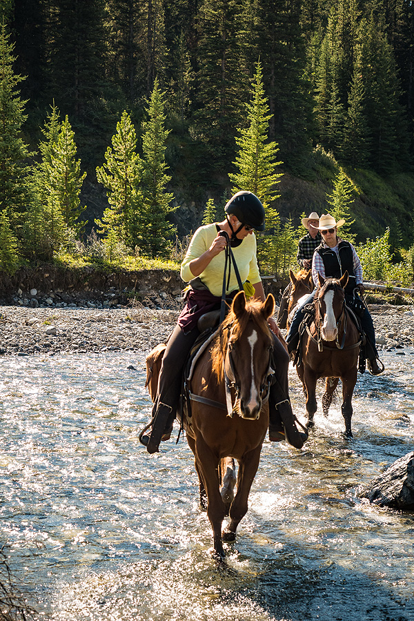 Horse riding holiday in Banff National Park