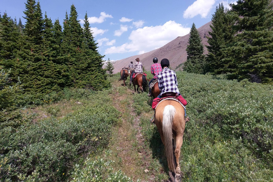 Horseback vacation in Banff