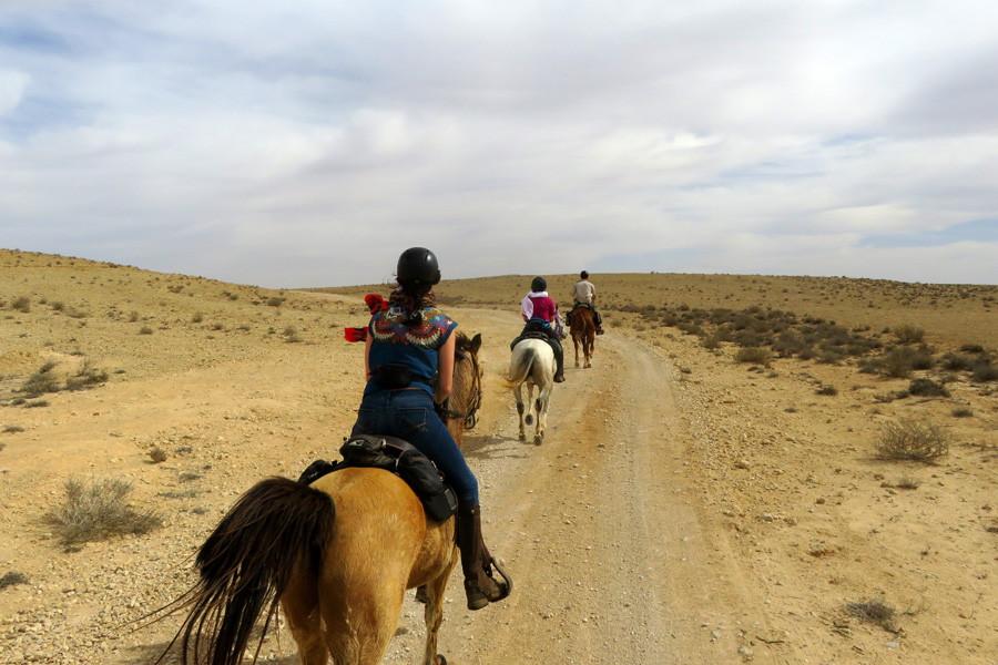 Horse riding holiday in Negev desert