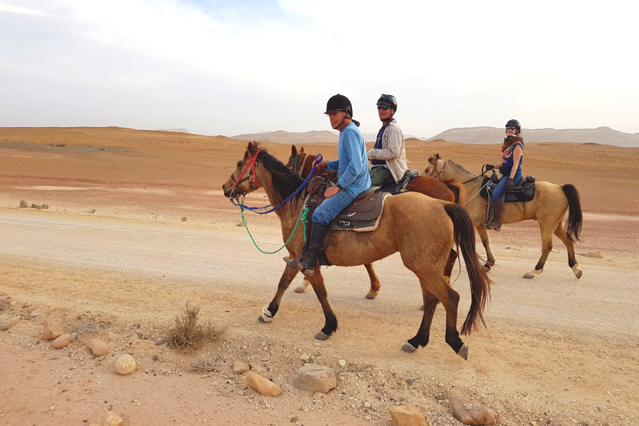 Horse riding holiday in Israeli desert