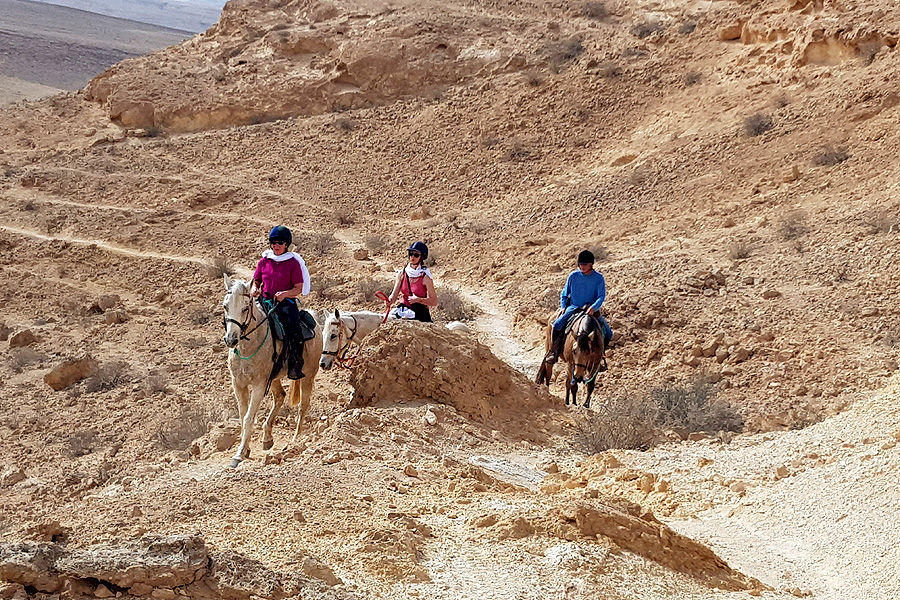 Horse riding holiday in Israel