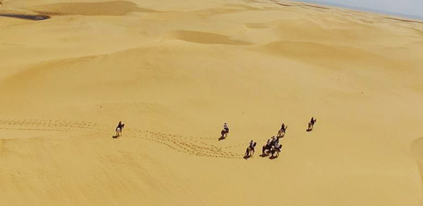 Riding on the sand dunes