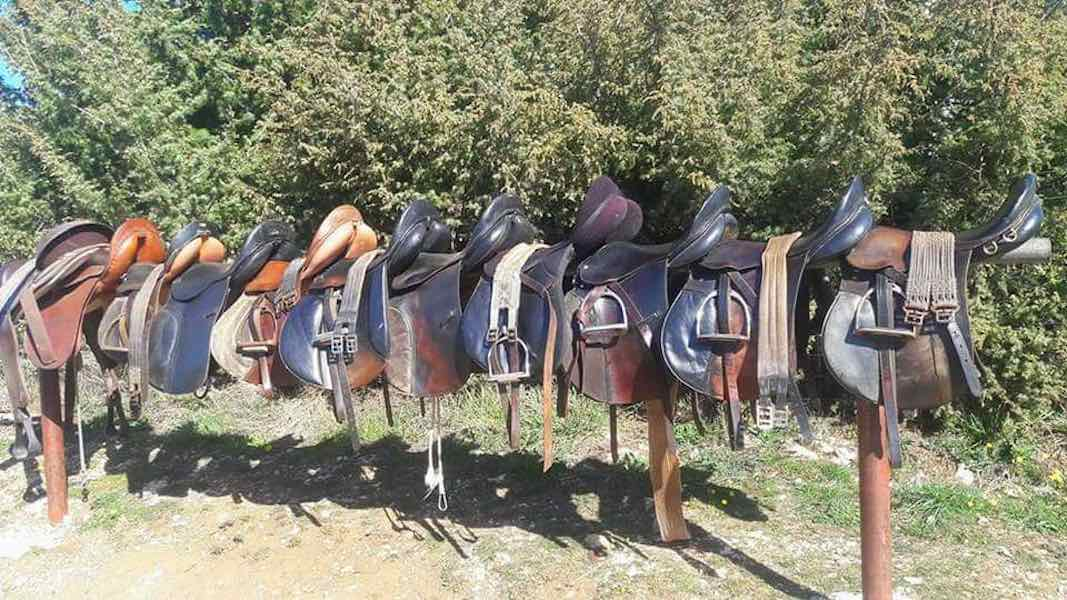 Saddles in the sun