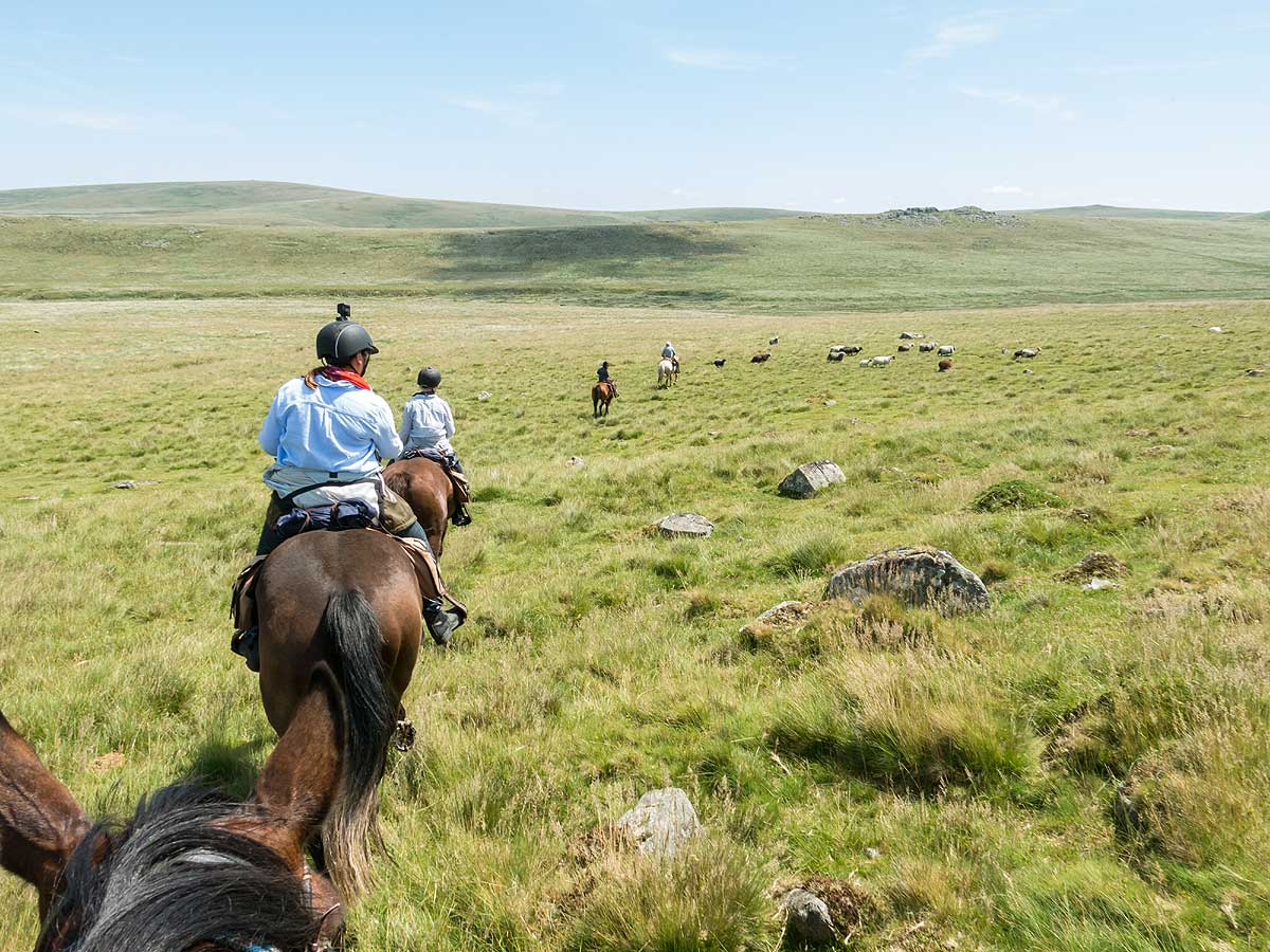 Riding across the open moors Dartmoor