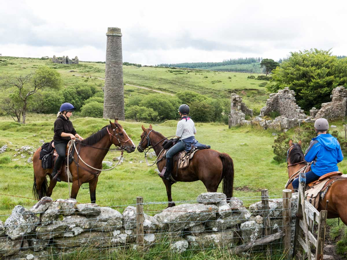Horses with stone pillar Dartmoor