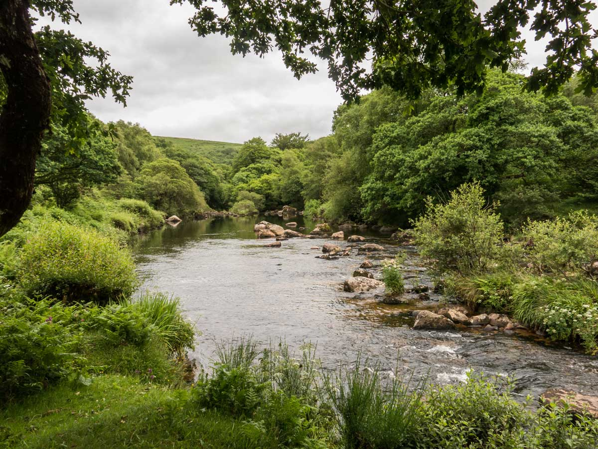 Dartmoor river scene