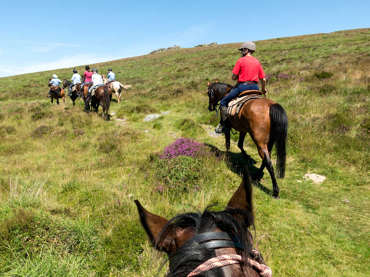 Riding up and over open moors Dartmoor