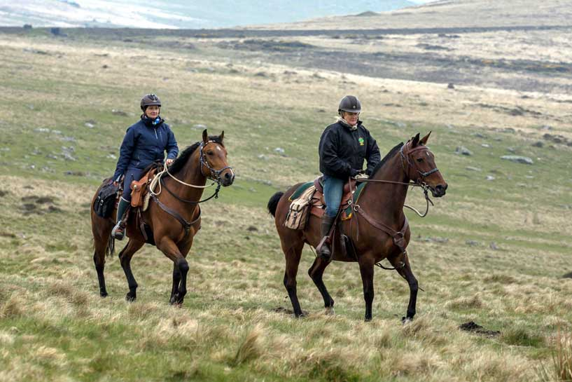 Trot on Dartmoor riding holiday