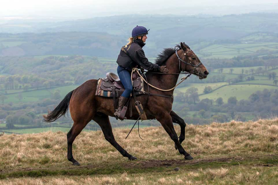 Canter on Dartmoor Crossing riding holiday