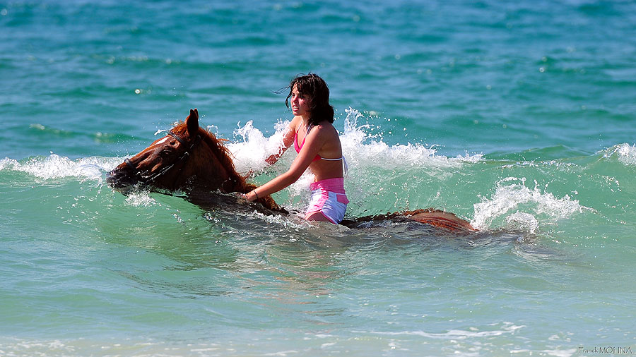 Swimming in the sea with a trusty pony
