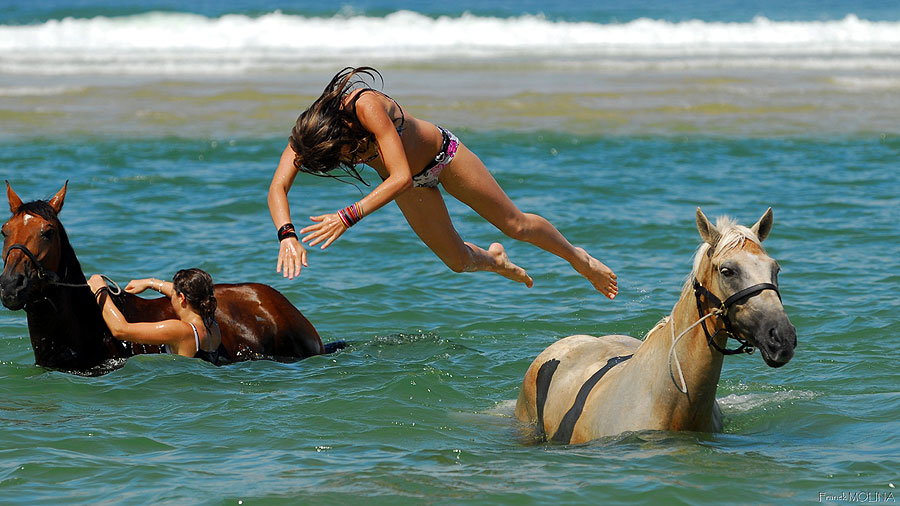 Diving off the horse into a lagoon