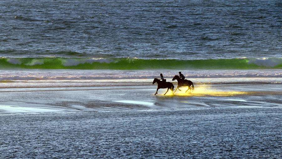 A final sunset canter on an empty beach