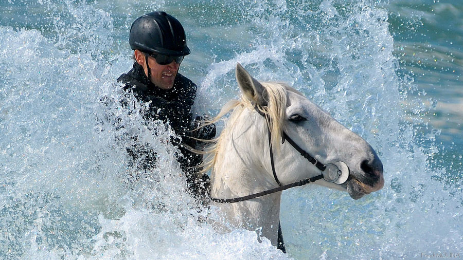 Making a splash with your horse!
