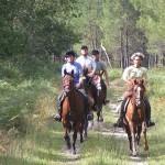 Frankrike – Till häst i Armagnac – upptäcksfärd på egen hand!