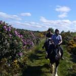 Irland – Med mervärde – långritt i Bundoran