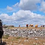 Portugal – Sagolik långritt och träningsvecka i centrala Portugal
