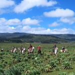 """Etiopien – långritt i """"drottningen av Shebas"""" fotspår"""