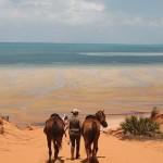 Mocambique –  Pudervita sandstränder