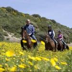 Italien – Sardinien – vild, vacker och luxuös