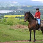 Wales vidsträckta hedar